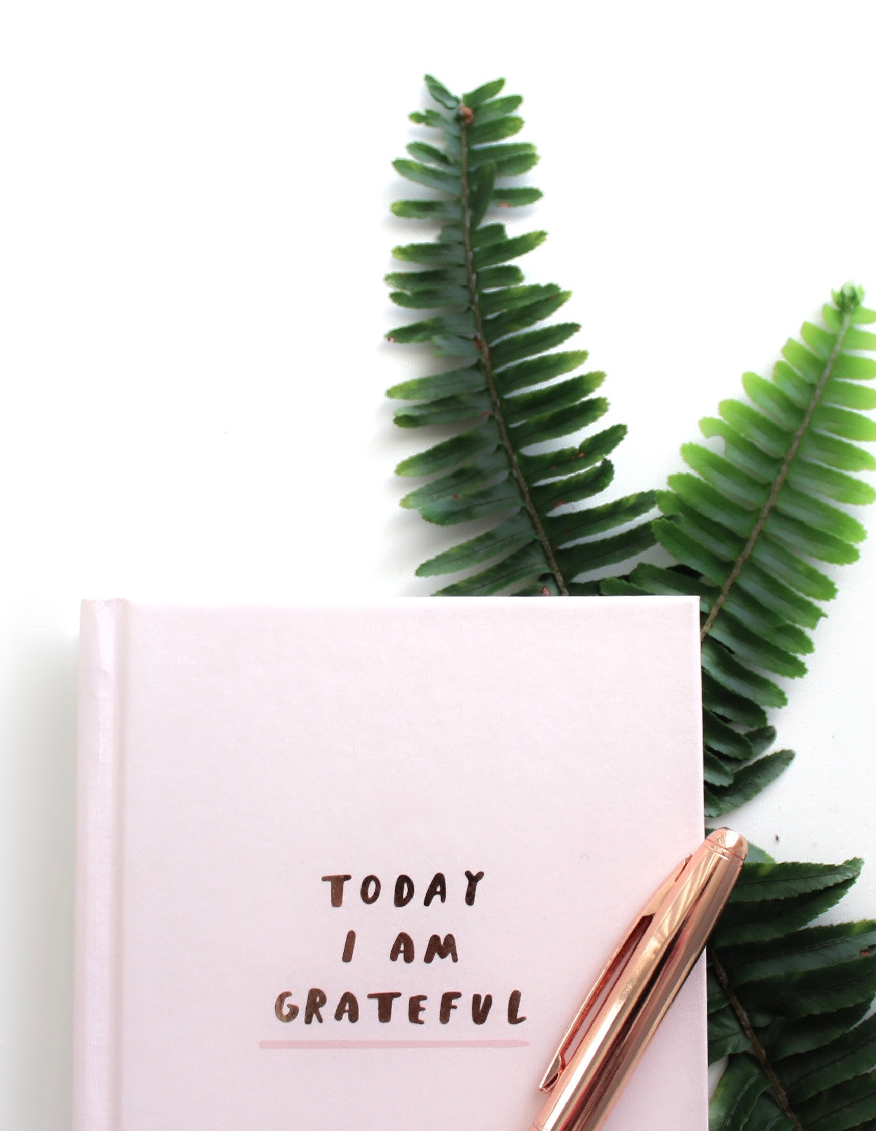pratiquer la gratitude