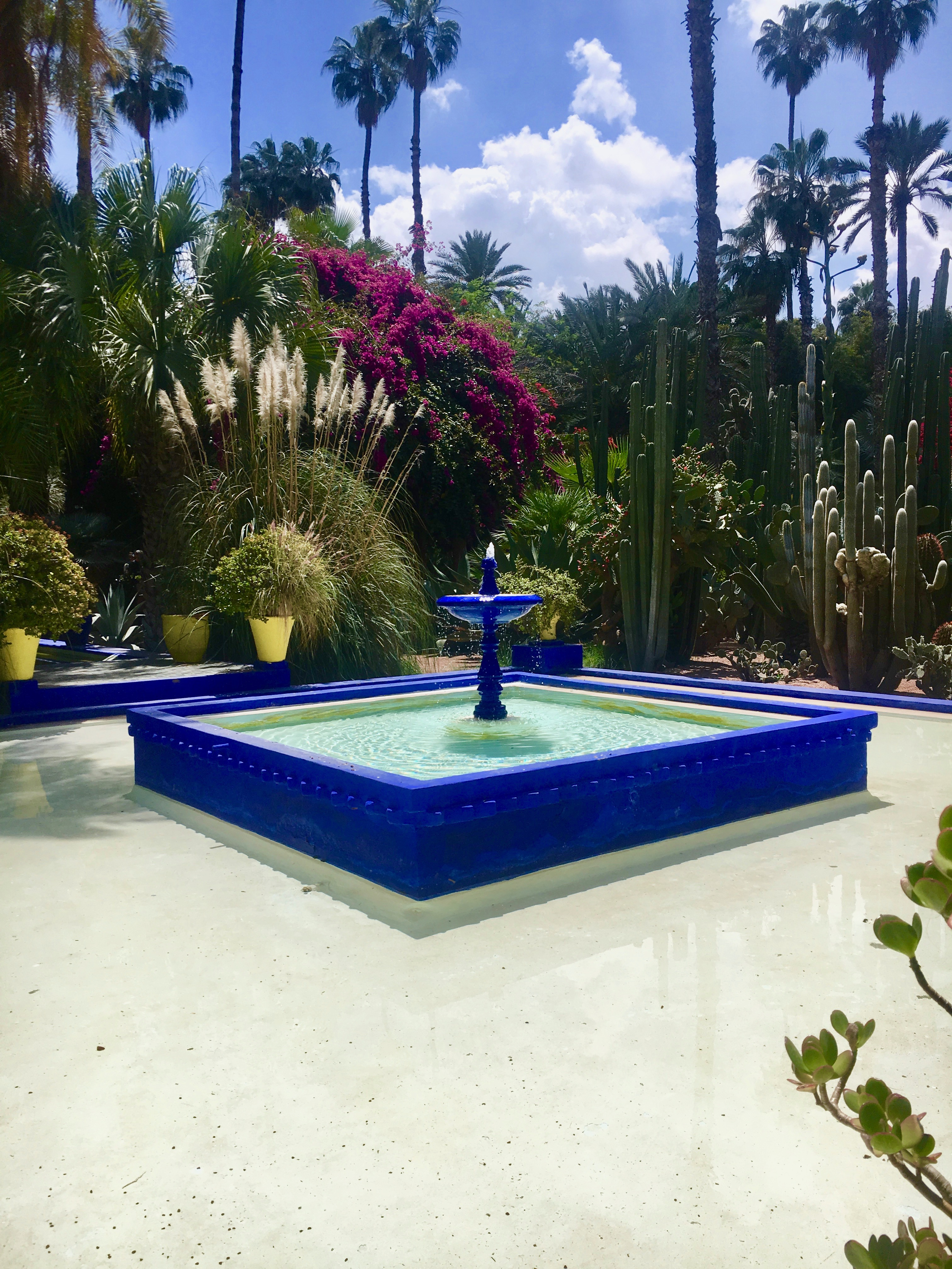 visiter marrakech en 3 jours  jardin majorelle