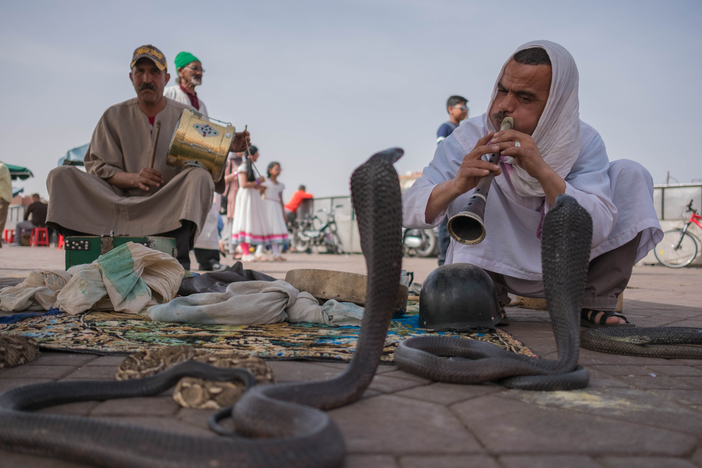 visiter marrakech en 3 jours place jema el-fna